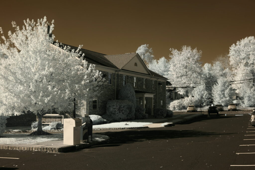 infrared conversion photo by Canon 5D 720nm Filter