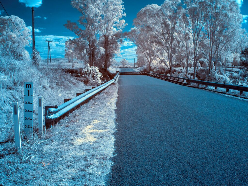 infrared conversion photo by logan river