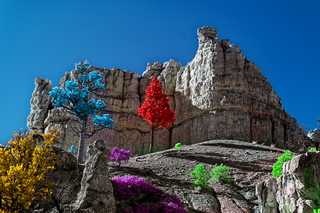 infrared conversion photo by Red Canyon Color Splash